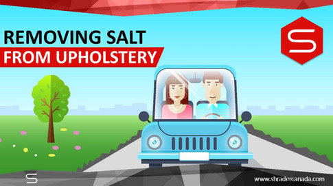 Removing Salt from upholstery (1).JPG