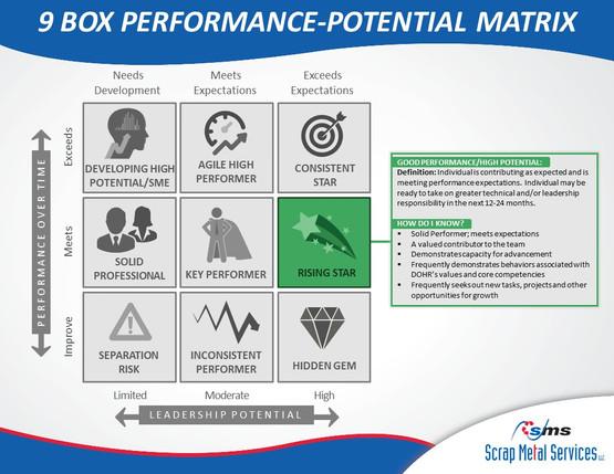 9 Box Performance-Potential Matrix (3).J