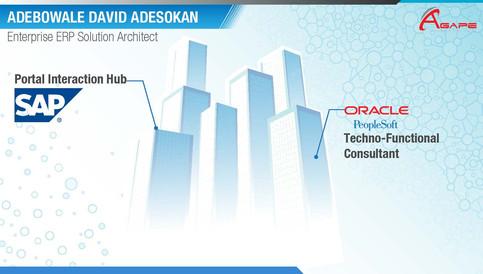 Career Summary Debo D. Adesokan