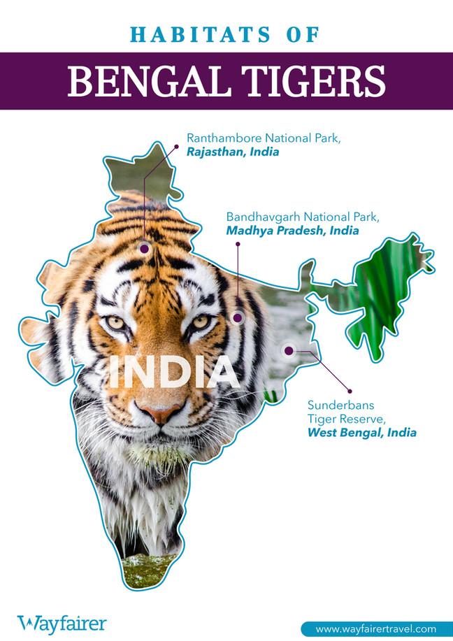 Habitats of Bengal Tigers