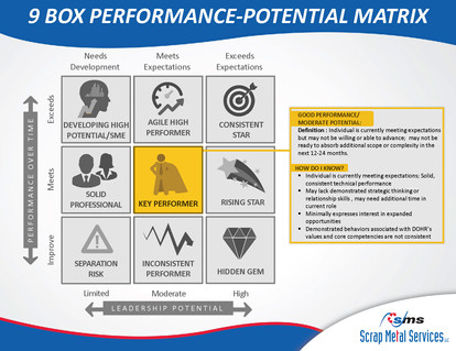 9 Box Performance-Potential Matrix_Page_06
