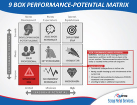 9 Box Performance-Potential Matrix_Page_10