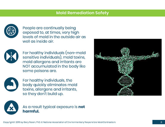 Mold Health & Safety (8).jpg
