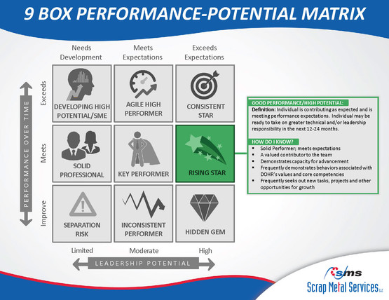 9 Box Performance-Potential Matrix_Page_03