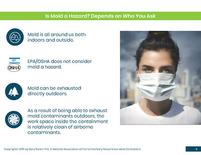 Mold Health & Safety (5).jpg