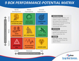 9 Box Performance-Potential Matrix_Page_01