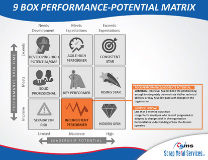9 Box Performance-Potential Matrix_Page_07