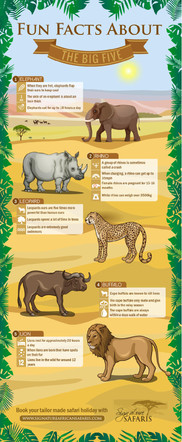 Fun Fact About The Big Five