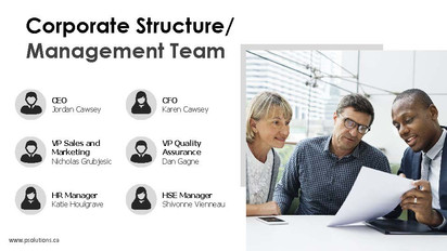 Corporate structure/management team