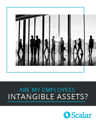 Are My Employees Intangible Assets