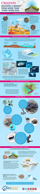 Creation_–_Discover_a_World_from_More_Than_10,000_Years_Ago_Infographic