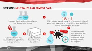 Removing Salt from upholstery (4).JPG