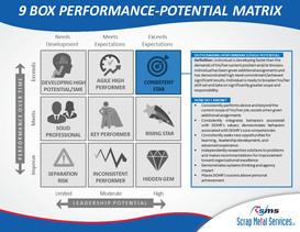 9 Box Performance-Potential Matrix (2).J