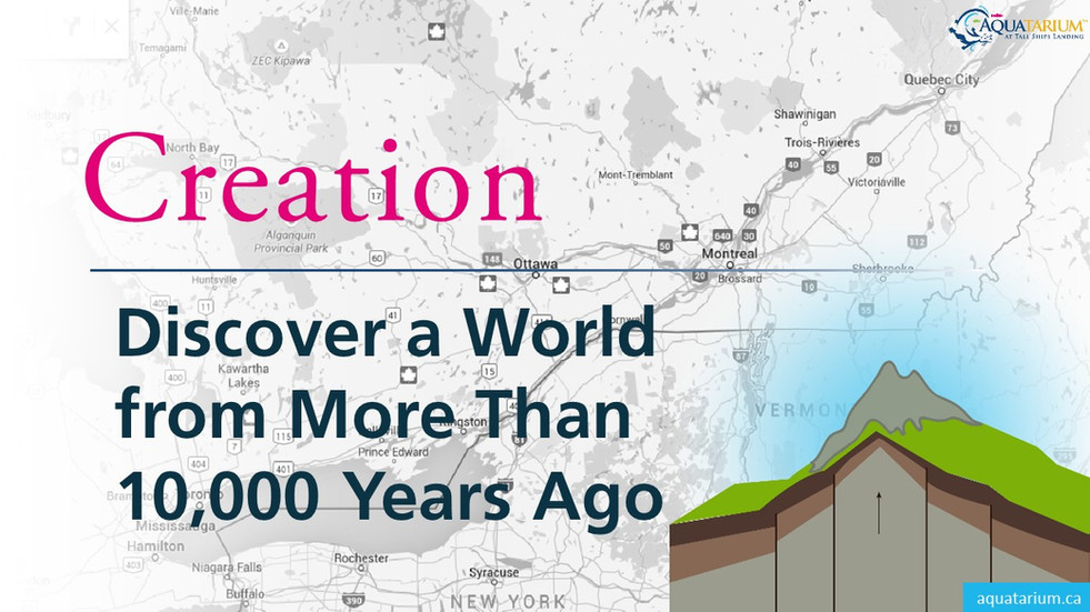 Discover a World from More Than 10,000 Years Ago