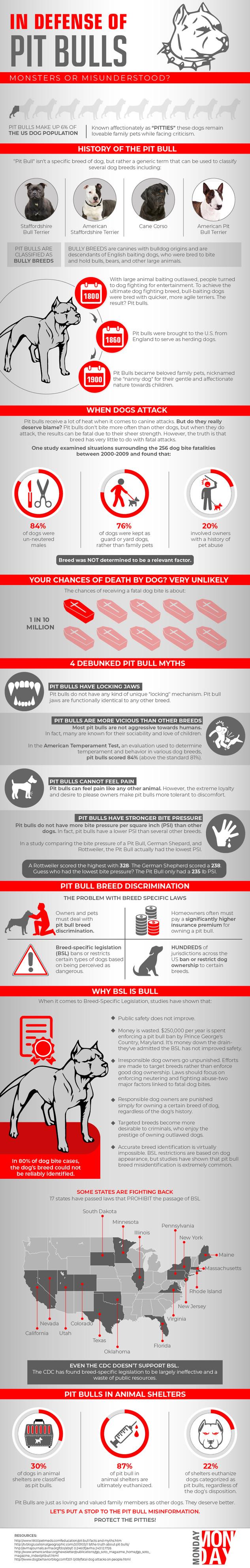 In Defense Of Pit Bulls