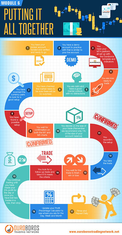 Module 6 Putting It All Together Infographic