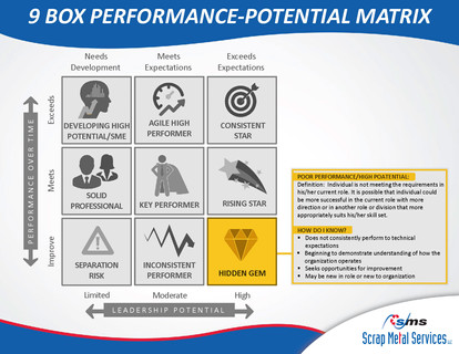 9 Box Performance-Potential Matrix_Page_04
