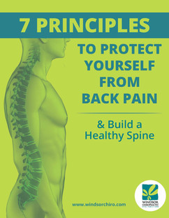7 Principles to Protect Yourself from Back Pain
