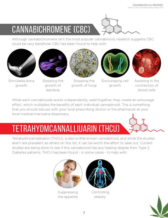 Cannabinoids in A Nutshell (9).jpg
