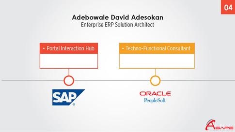 Career Summary Debo D. Adesokan_Page_02.