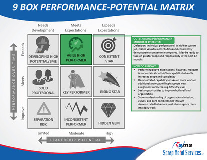9 Box Performance-Potential Matrix_Page_05
