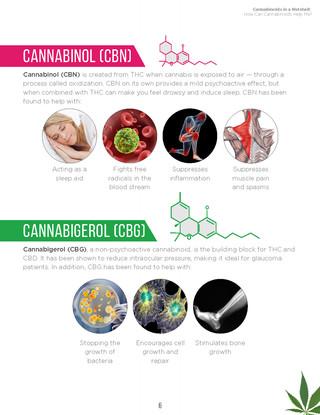 Cannabinoids in A Nutshell (8).jpg
