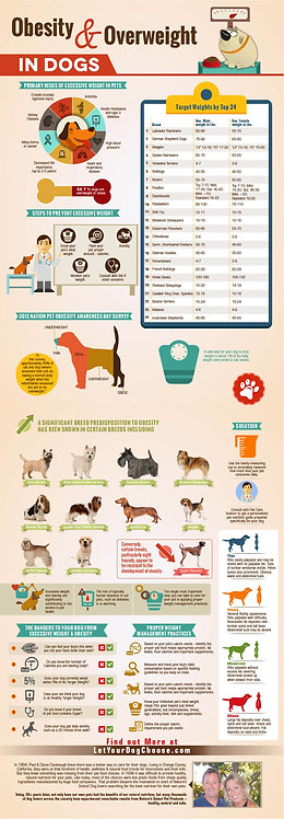In The Pet Industry (Social Media) Infographic