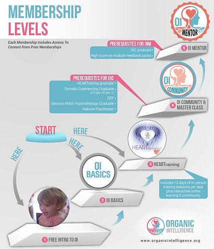 Membership Levels Infographic