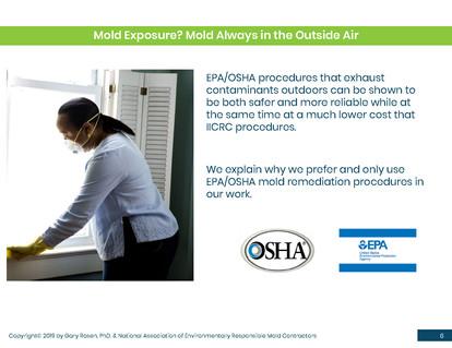 Mold Health & Safety (6).jpg