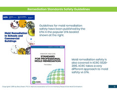 Mold Health & Safety (12).jpg