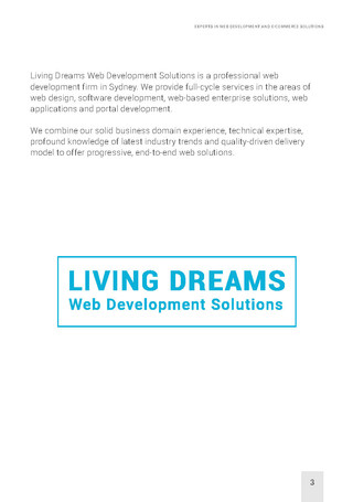 EXPERTS IN WEB DEVELOPMENT_Page_03.jpg
