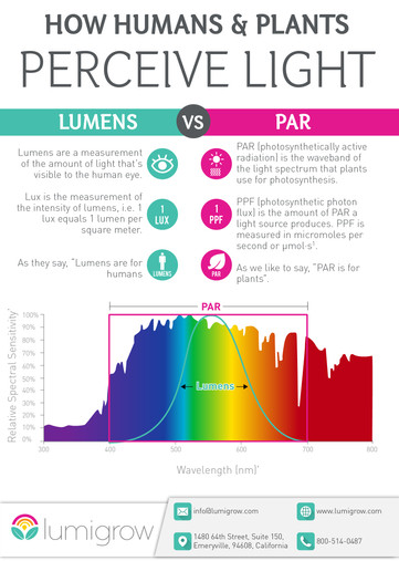 How Humans & Plants Perceive Light