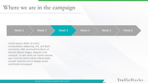 Weekly Report Template (2).JPG