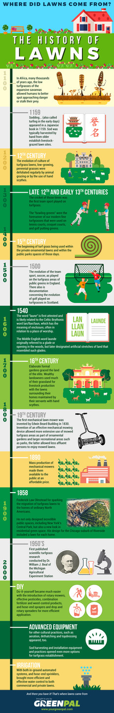 The History of Lawns