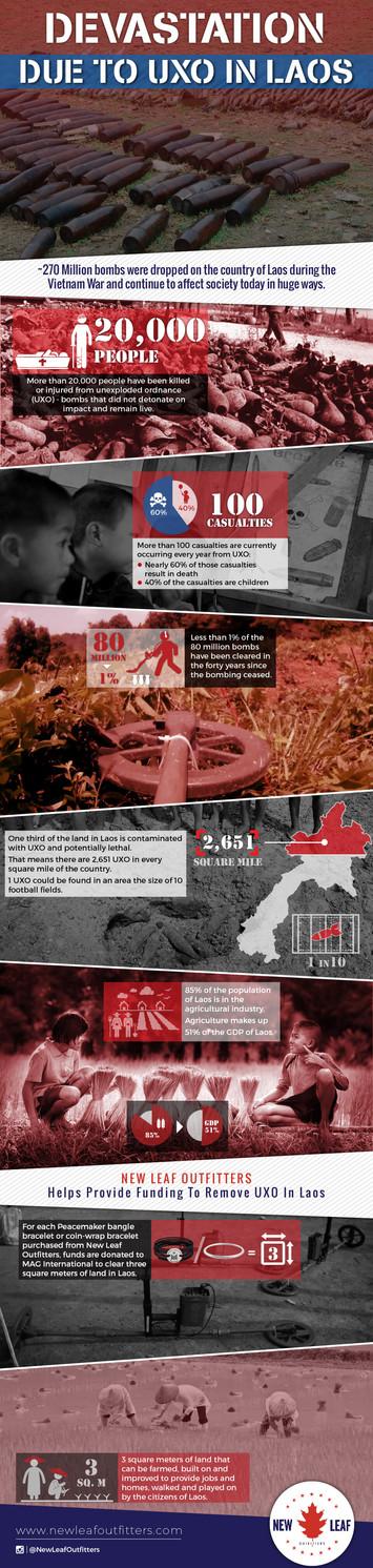 Devastation Due to UXO in Laos