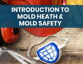 Mold Health & Safety (2).jpg