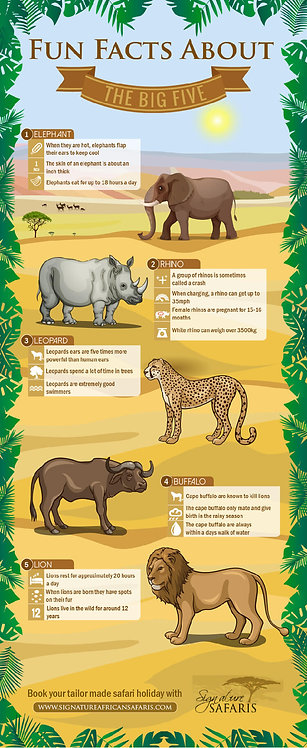 Fun Facts about the Big Five Infographic