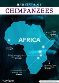Habitats of Chimpanzees