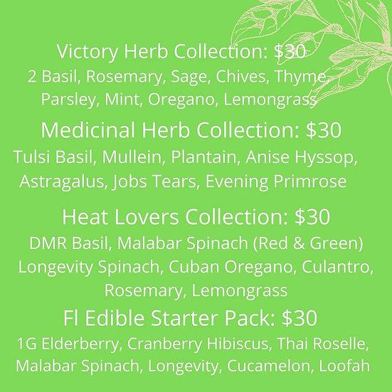 Medicinal Herb Collection