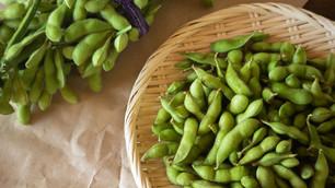 世界で人気の枝豆(EDAMAME)