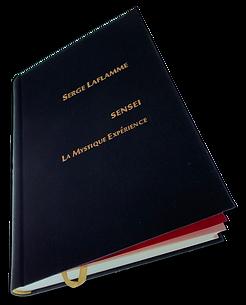 Livre Art Sensei La Mystique Expérience