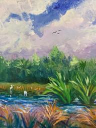 9x12 Florida Reserve $375.jpeg