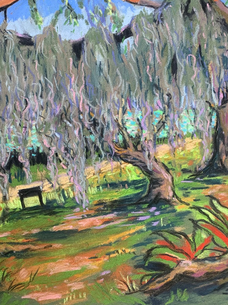 Hanging Moss at Fort Pierce Park, Pastel