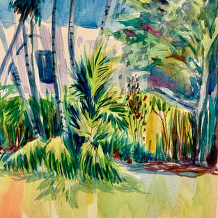 Florida colour.JPG