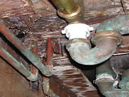 mold under floor.jpg