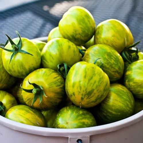 Plant- Tomato, Heirloom - Green Zebra