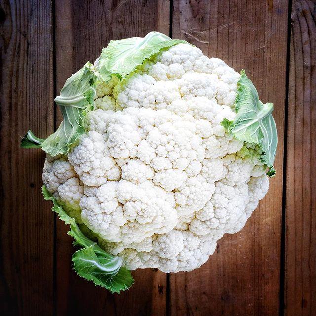 Gorgeous cauliflower for the Old Town Auburn market tomorrow!
