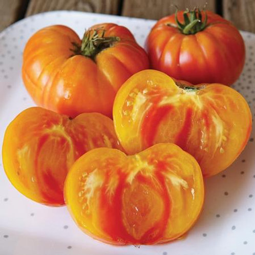 Plant- Tomato, Heirloom - Pineapple