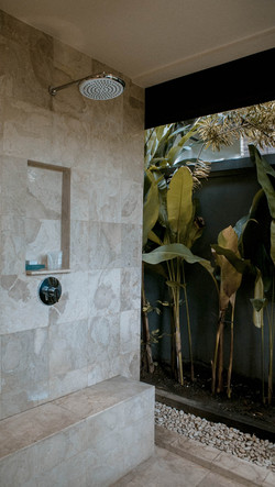 Twin bathroom shower