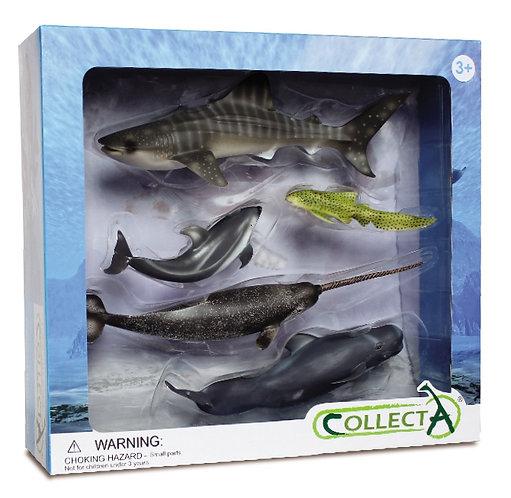 CollectA Sea Creatures Set - 5pcs